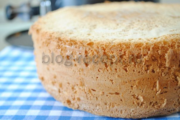 бисквит классический в духовке рецепт